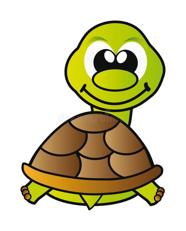 查出的乌龟白色 皇族释放例证