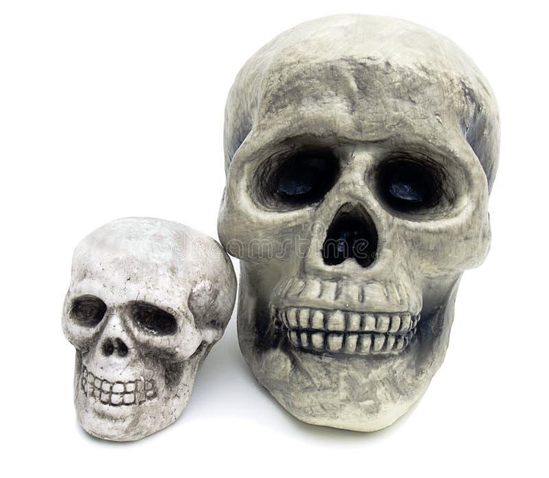 查出的可怕头骨二白色 图库摄影