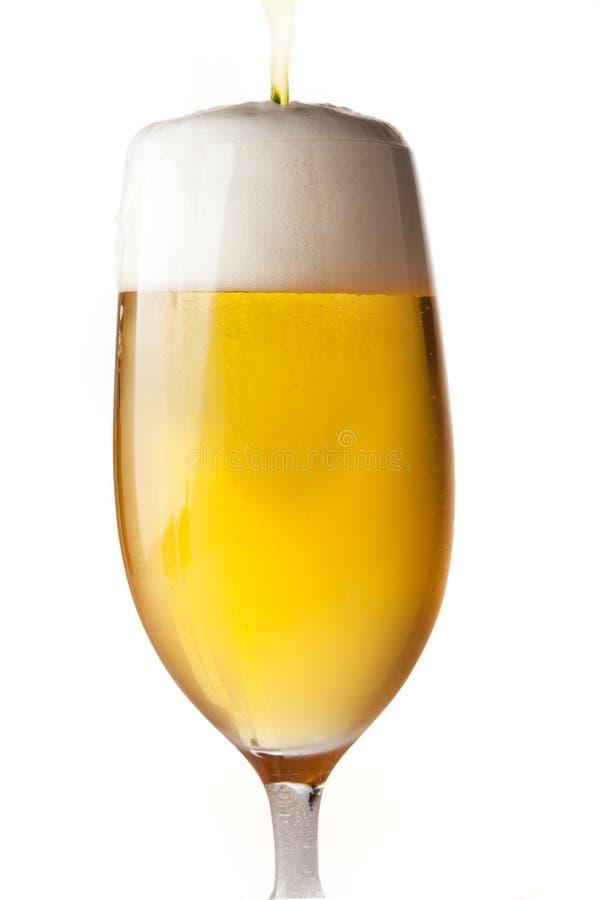 查出的啤酒倾吐 免版税库存照片
