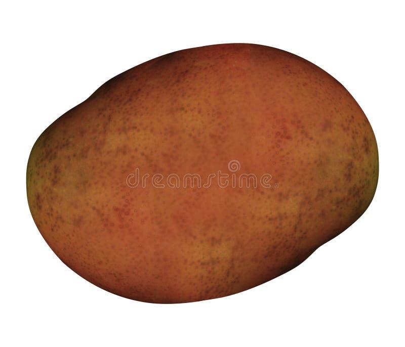 查出的土豆白色 皇族释放例证