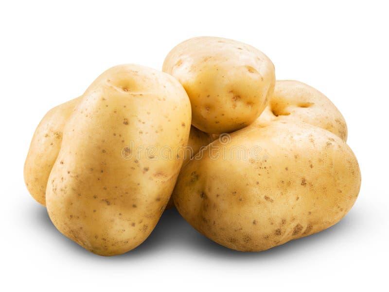 查出的土豆 免版税图库摄影