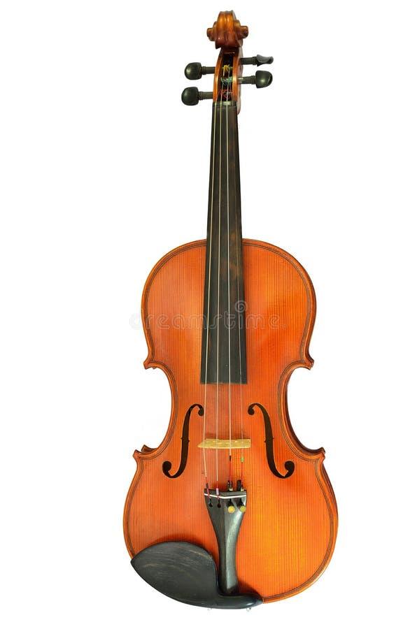 查出的小提琴白色 库存图片
