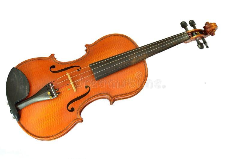 查出的小提琴白色 免版税库存照片