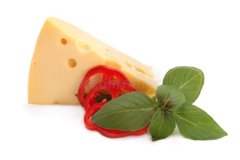 查出的开胃菜干酪 免版税图库摄影