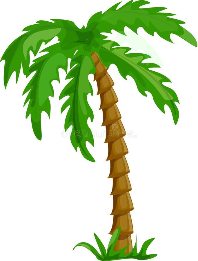 查出的棕榈树热带向量 向量例证