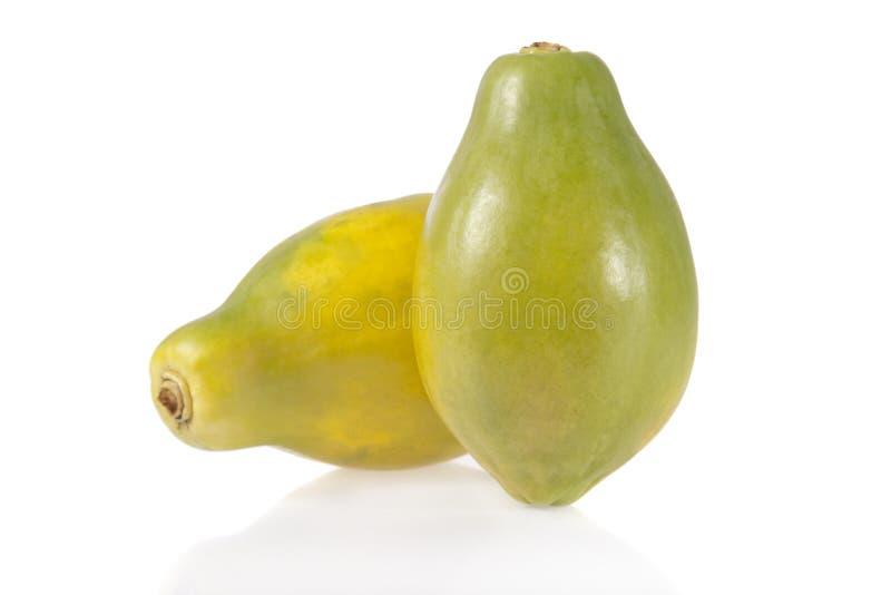 查出的番木瓜成熟白色 免版税库存图片