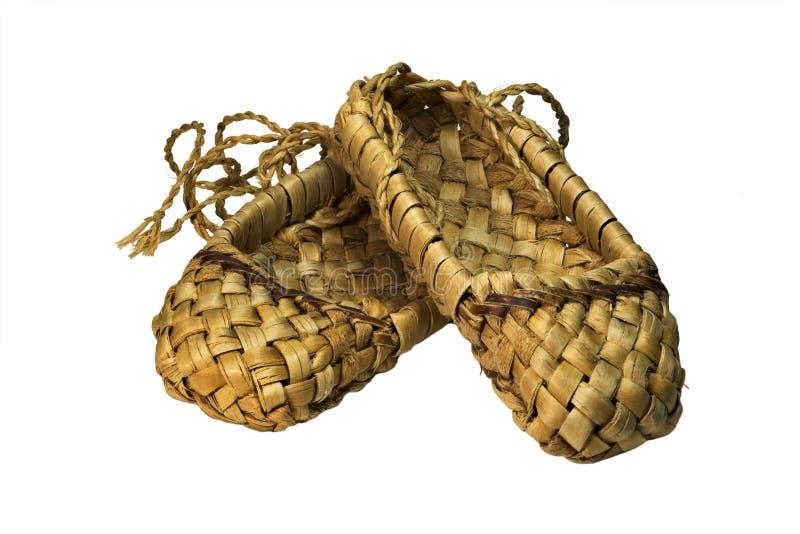 查出的背景韧皮反对空白的鞋子 免版税库存照片