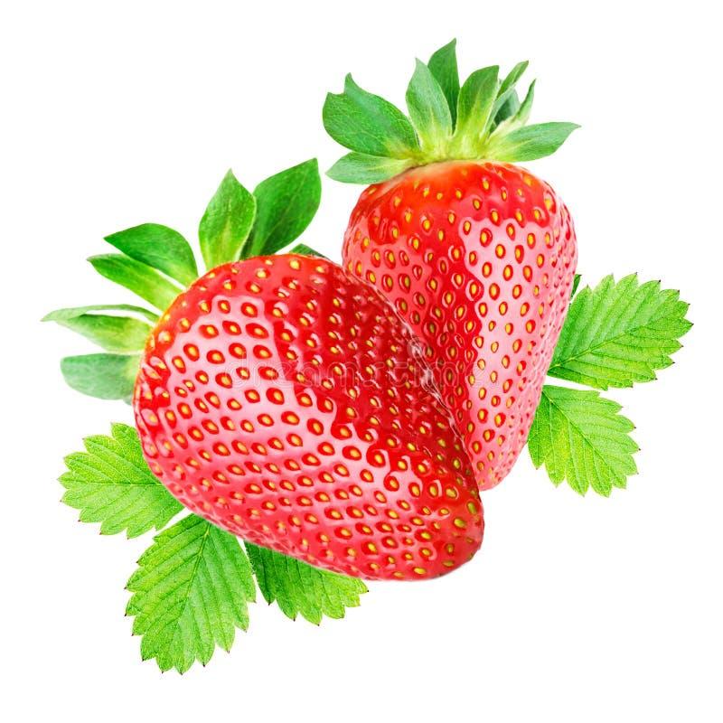查出的草莓二 免版税图库摄影