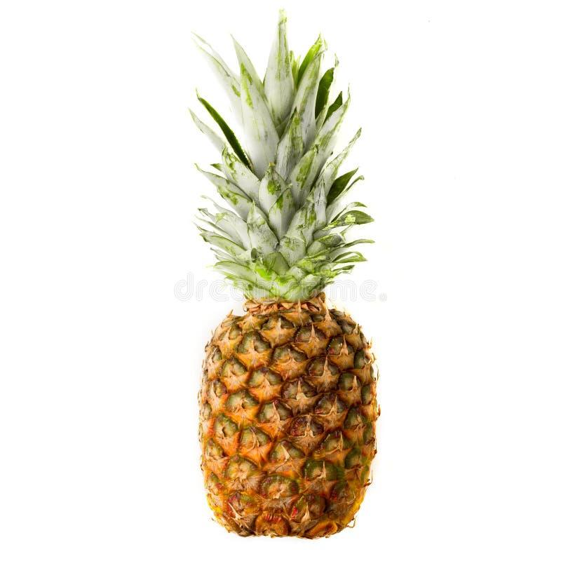 查出的菠萝成熟白色 免版税库存图片