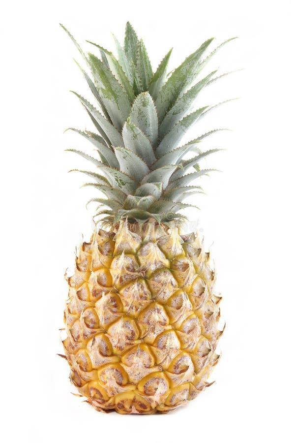 查出的菠萝 库存图片