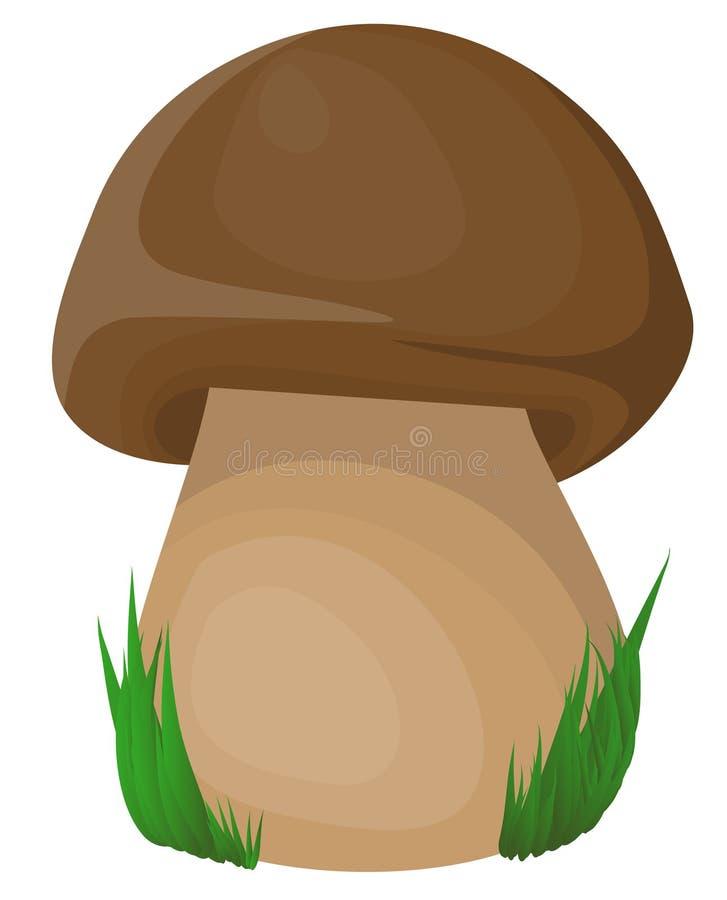 查出的蘑菇 向量例证