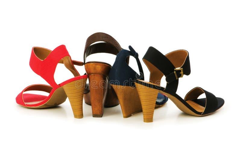 查出的鞋子妇女 库存照片