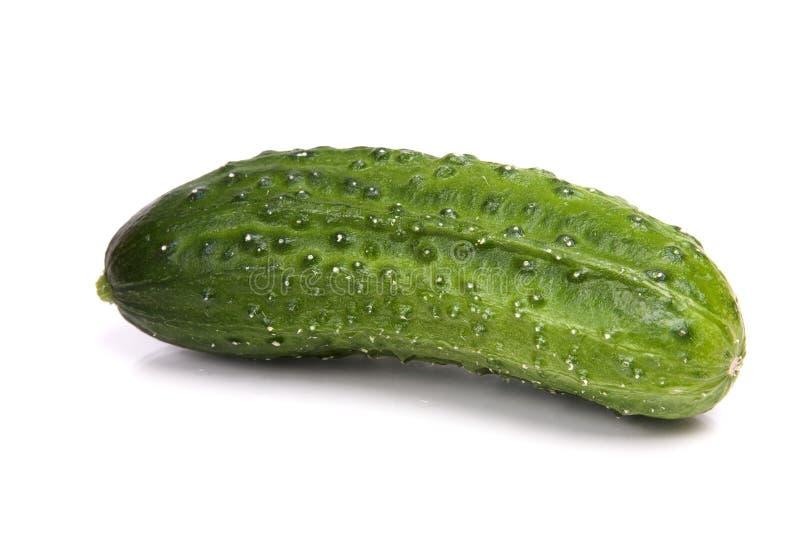 查出的黄瓜 免版税库存照片