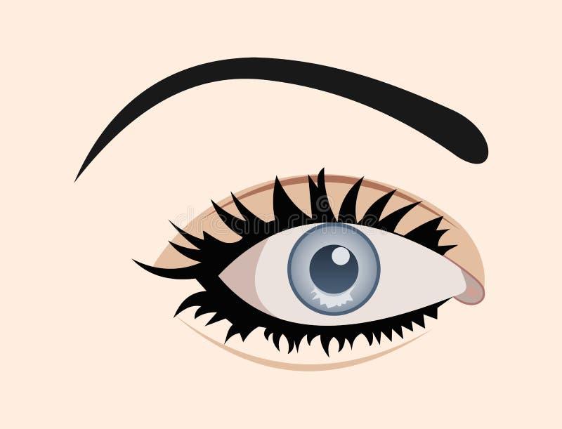 查出的clous眼睛  向量例证