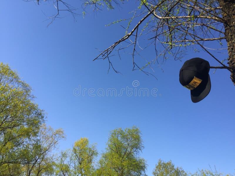 查寻的帽子 免版税库存照片