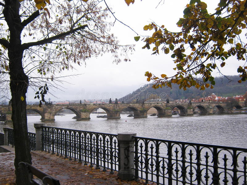 查尔斯桥梁 库存图片