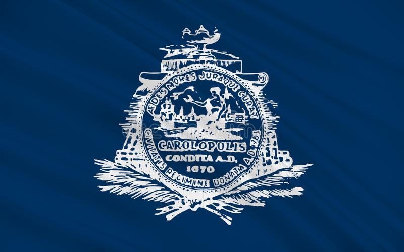 查尔斯顿旗子在南卡罗来纳,美国 皇族释放例证
