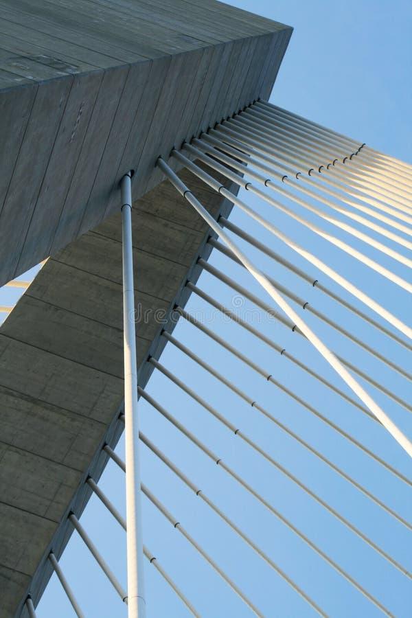 查尔斯顿S.C.索桥摘要 免版税库存照片