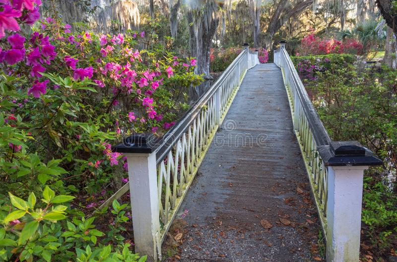查尔斯顿SC白色步行庭院桥梁 免版税库存图片