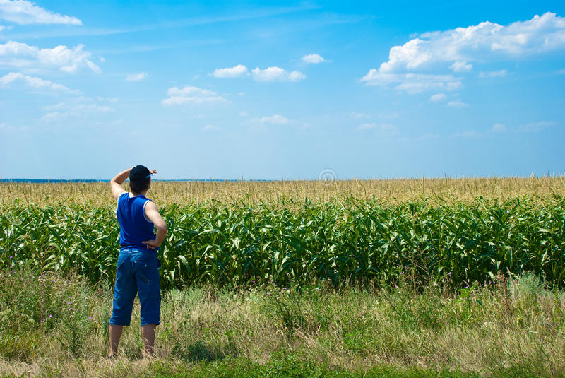 Download 查找人的域 库存图片. 图片 包括有 人力, 本质, 视图, 草甸, 人员, 夏天, 蓝色, 无忧无虑, 户外 - 15695609