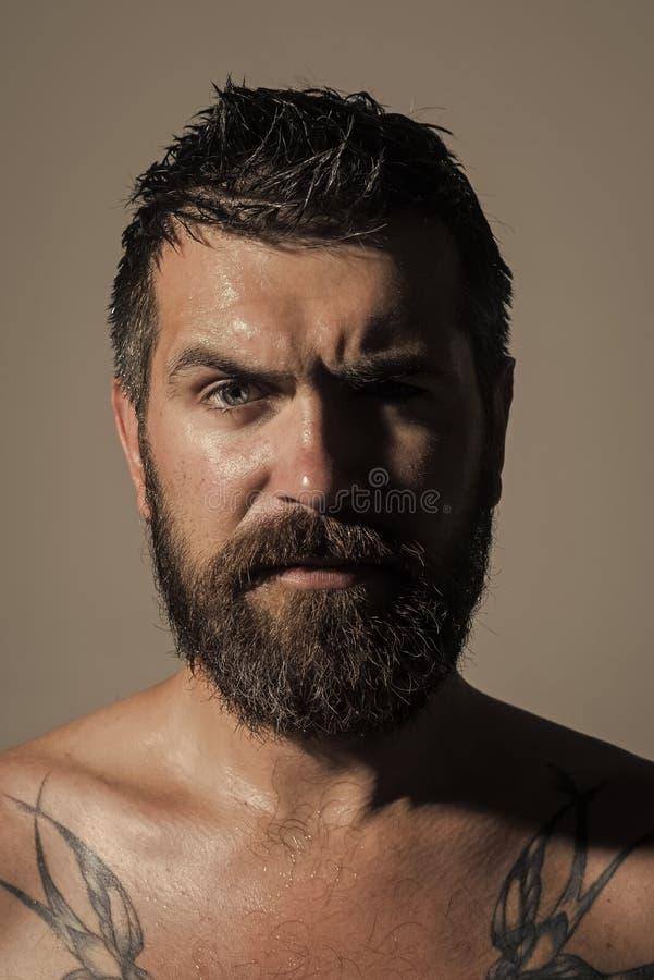 查找人的照相机 表面英俊的人 理发师时尚和纹身花刺秀丽