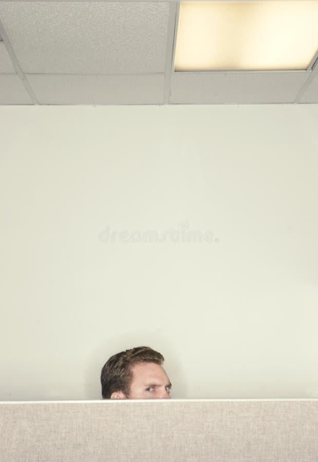 查找在墙壁的生意人 库存图片