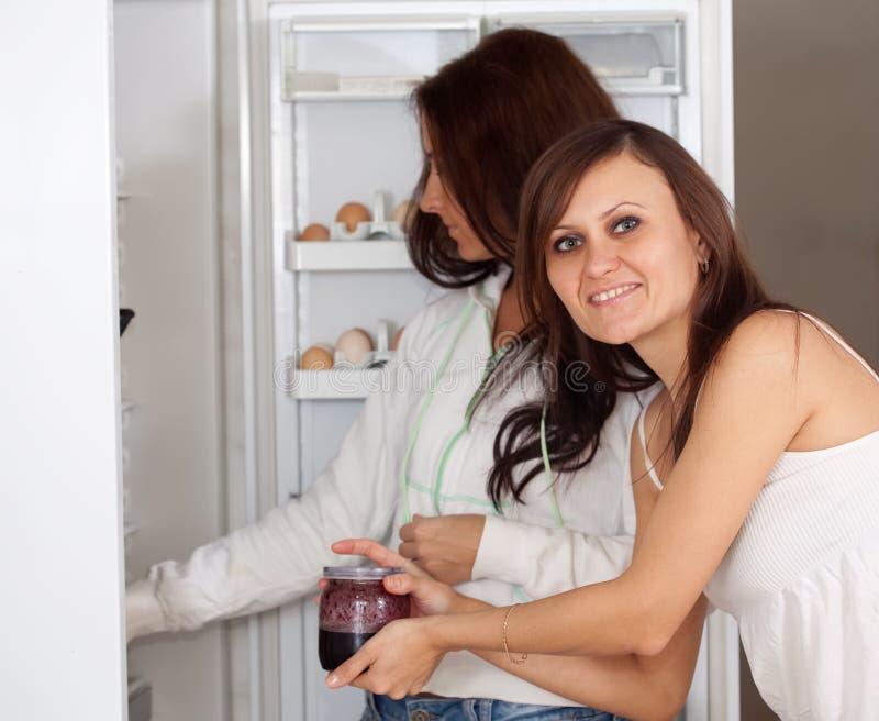 查找某事的冰箱妇女 库存照片