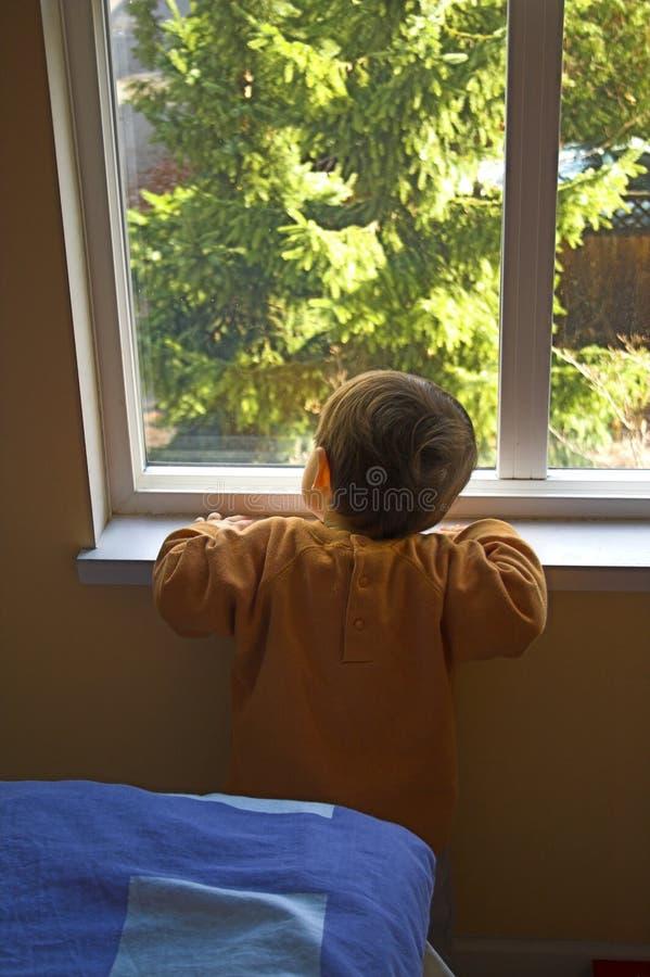 查找的婴孩外面 免版税库存图片