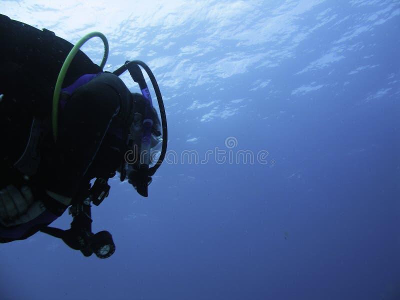 查找表面的潜水员 免版税库存图片