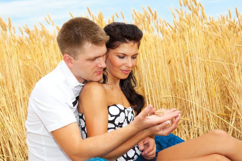 查找麦子的夫妇耳朵 库存照片
