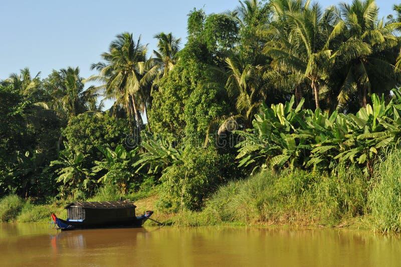 柬埔寨树汁tonle 免版税库存图片