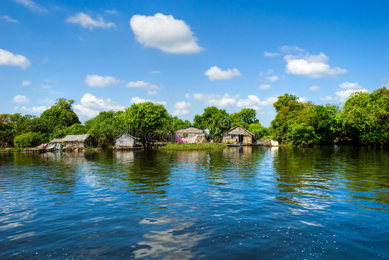 柬埔寨湖树汁tonle 图库摄影