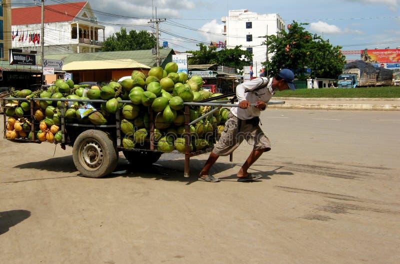 柬埔寨购物车椰子移动卖主 免版税图库摄影