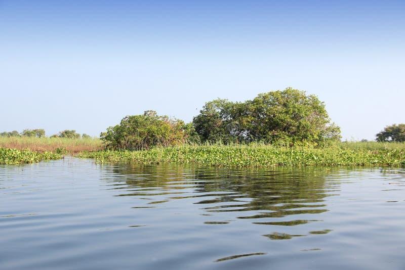 柬埔寨-洞里萨湖 图库摄影