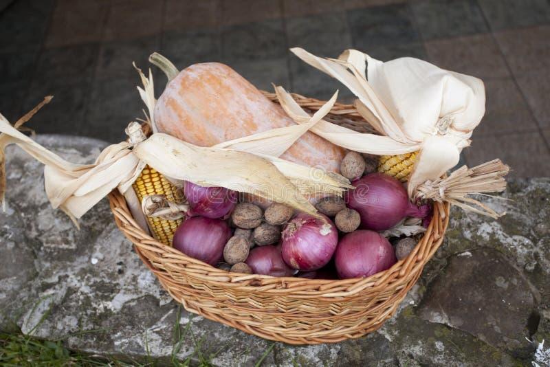柳条筐用玉米、坚果、南瓜和葱 免版税图库摄影