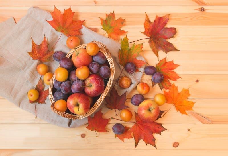 柳条筐用苹果、五颜六色的李子和秋天枫叶在木背景 图库摄影
