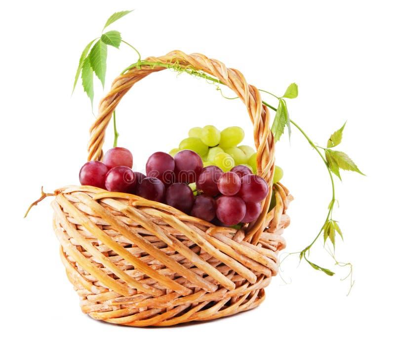柳条篮子的葡萄 免版税库存照片