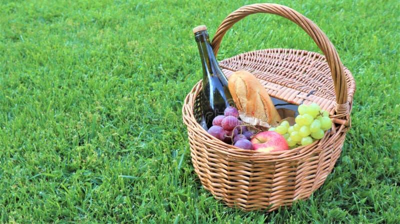 柳条野餐篮子用白色和黑葡萄和酒在绿草外部在夏天公园,没有人 库存图片