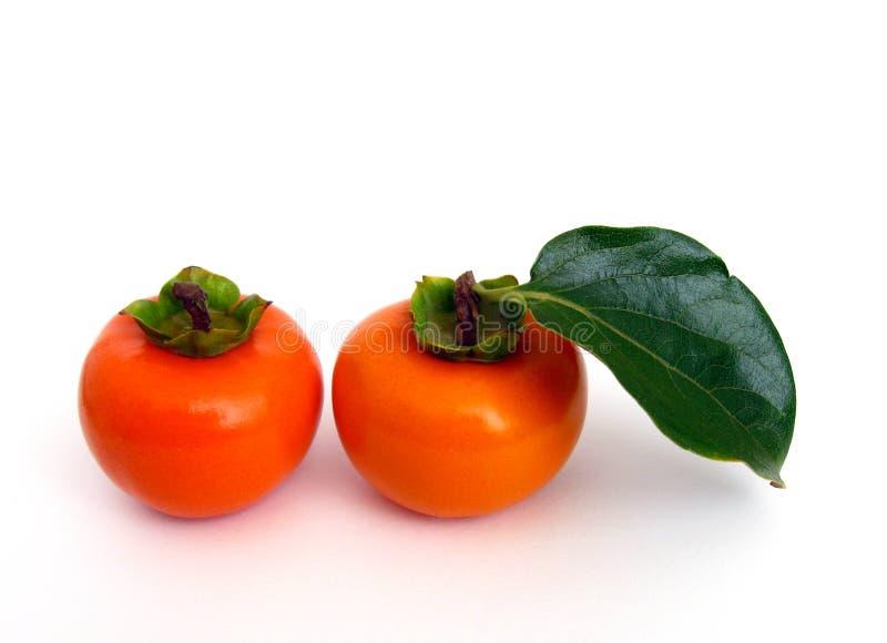 柿子 免版税库存图片