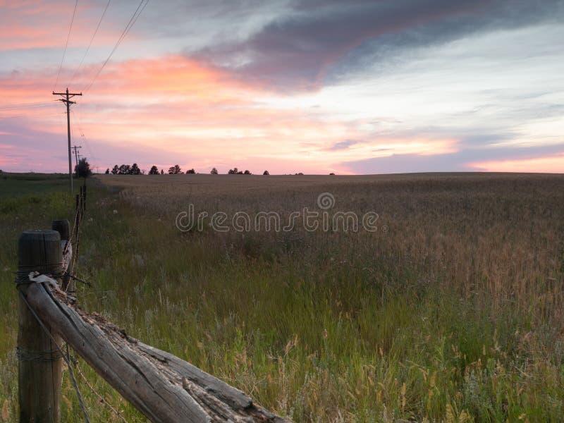 栅栏和在一个领域的电源杆与上面日落 免版税库存图片