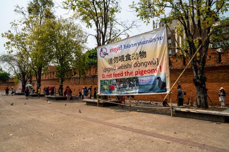 标志'不喂养鸽子的在Thapae门 库存图片