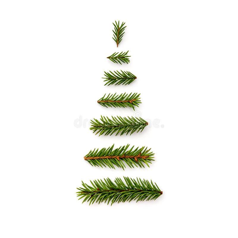 标志从冷杉的圣诞树在白色背景分支 库存照片