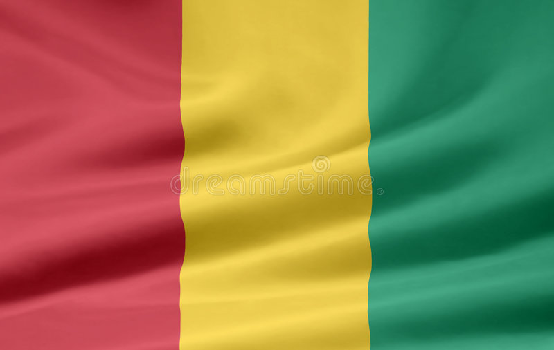 标志几内亚 库存例证