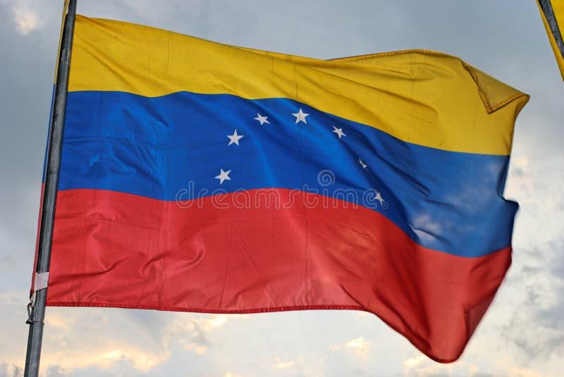标志委内瑞拉人 库存图片