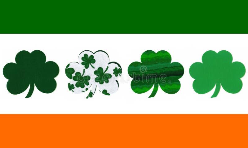 标志爱尔兰人三叶草图片