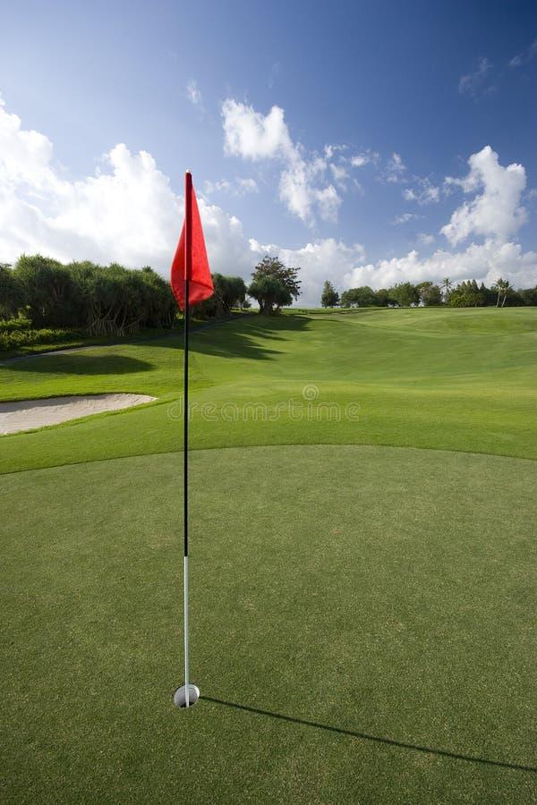 标志高尔夫球绿色 免版税库存图片