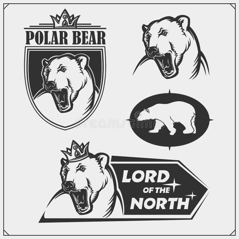 标签、象征和设计元素体育俱乐部的与北极熊 r 库存例证