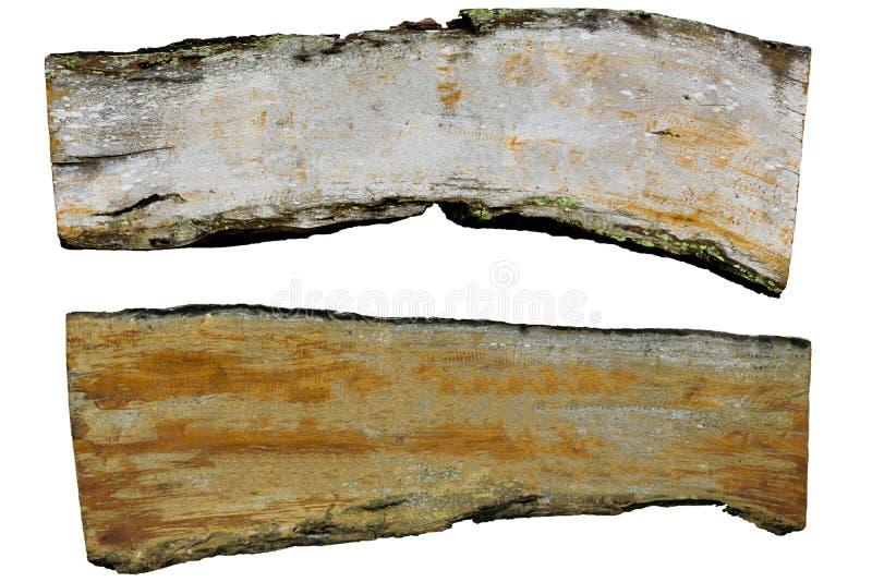 标签老木孤立 免版税库存图片