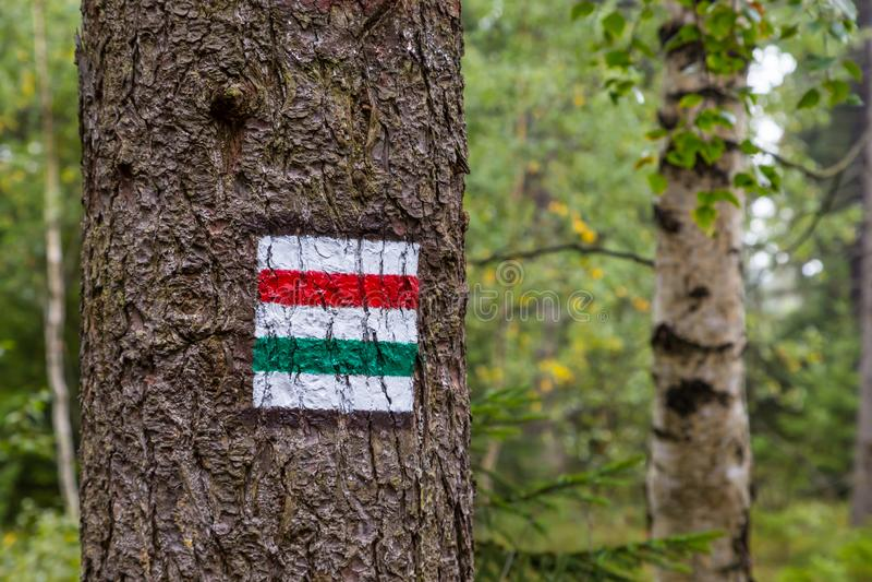 标记在树绘的旅游路线 旅游路线标志 图库摄影