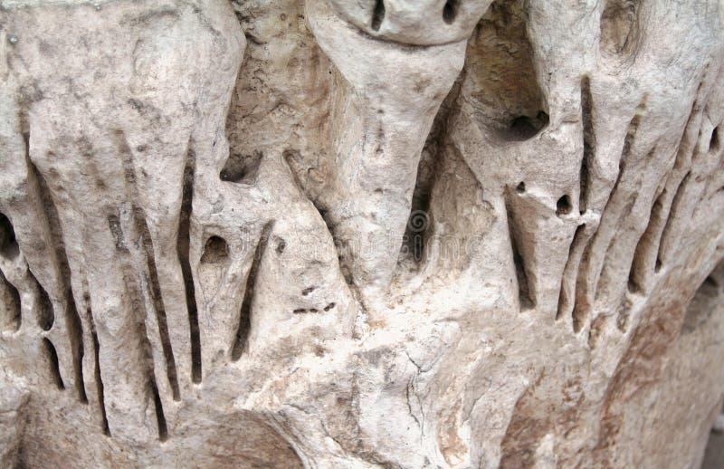 标记在石头罗马斗兽场我罗马 库存照片